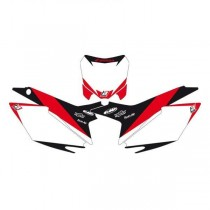 Fonds de plaque Blackbird Dream Graphic II 250 CRF R 04/05